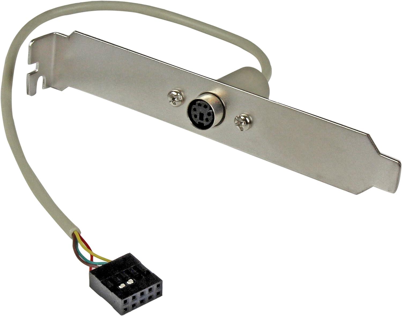 Amazon.com: StarTech.com 6 Pin MiniDIN PS/2 Mouse Slot Plate ...