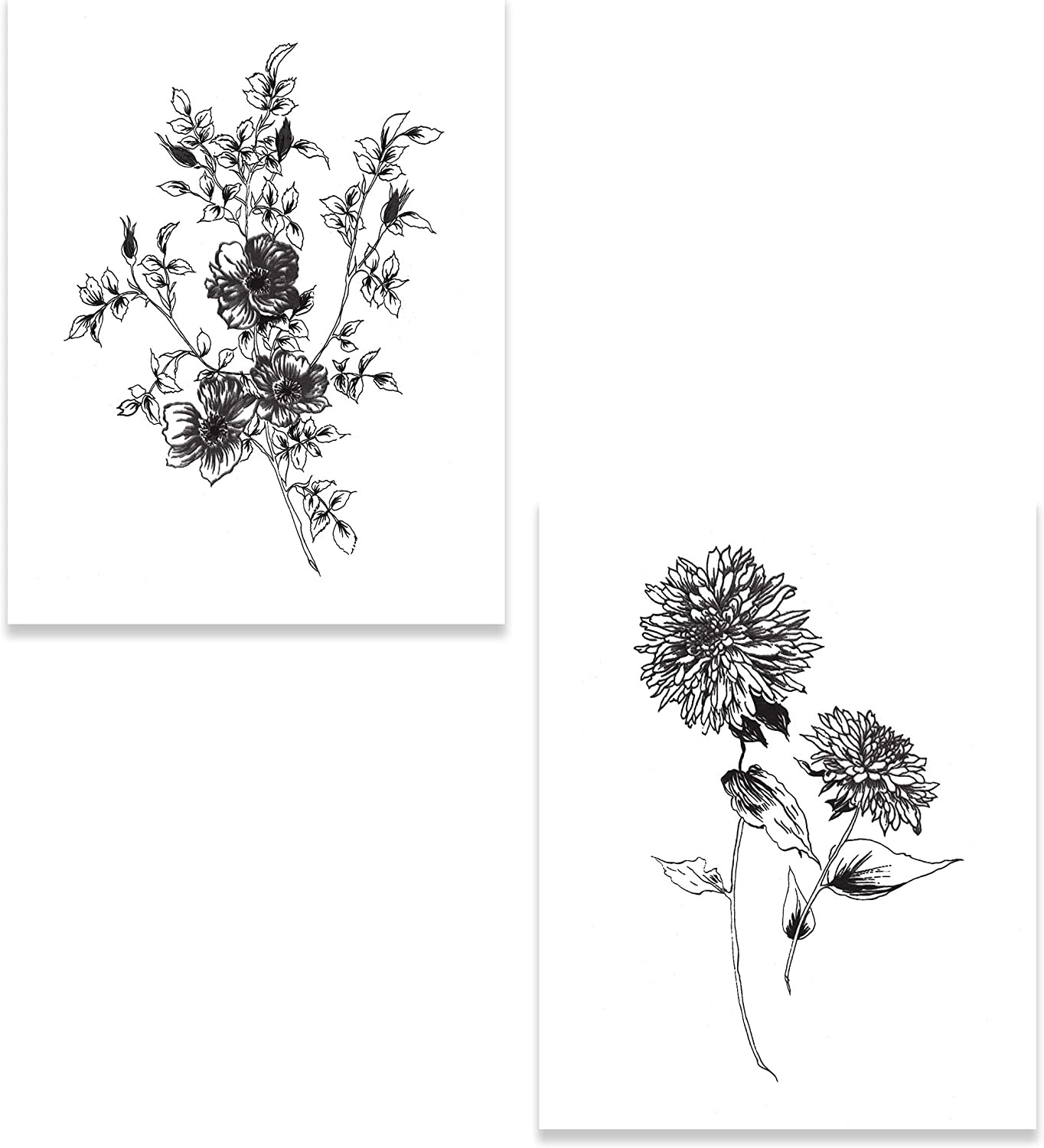 The Studio Resource, Inc. Contemporary Sketchbook Flowers on White II & IV by Wild Apple Portfolio (Printed on Paper); Two 11x14in Unframed Paper Posters