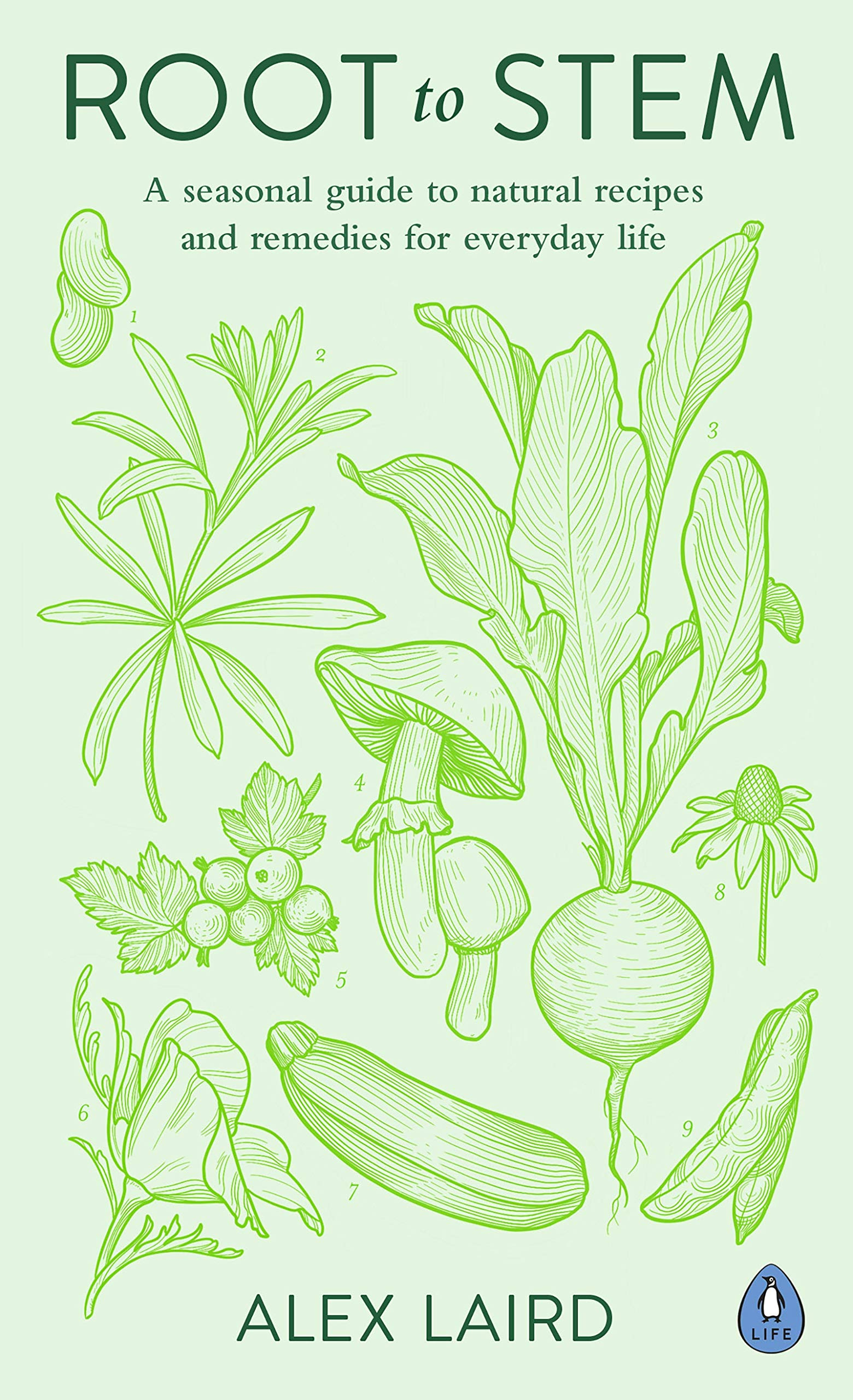 Root To Stem  A Seasonal Guide To Natural Recipes And Remedies For Everyday Life  English Edition
