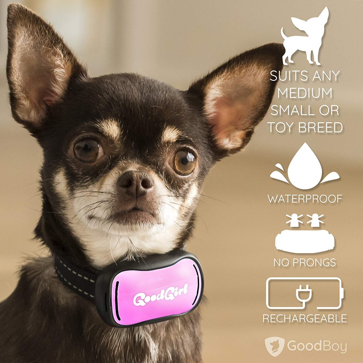 GoodBoy Small Rechargeable Dog Bark Collar for Tiny to Medium Dogs Waterproof and Vibrating Anti Bark Training Device That is Smallest & Most Safe On Amazon - No Shock No Spiky Prongs! (6+ lbs) by GoodBoy (Image #7)