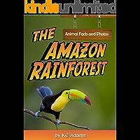 The Amazon Rainforest: Animal Facts & Photos