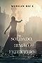 Soldado, Irmão, Feiticeiro (De Coroas e Glória—Livro 5)