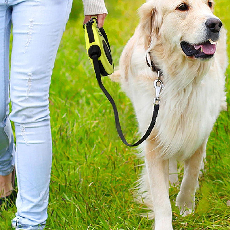 Yellow Retractil Correa de Perro con un Bot/ón de Freno /& Lock Correa Extensible Cuerda de Nylon Resistente y Duradero Extensible Hasta 5M de Libertad y Protecci/ón Soporta Mascotas Hasta 15KG