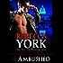 Ambushed (Decorah Security Series #4): A Decorah Security Series Short Story