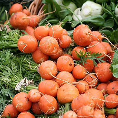 Organic Parisian Carrot Seeds Vegetable Seeds Small Carrots 50 Thru 1, 000 Seeds - 50 Seeds : Garden & Outdoor