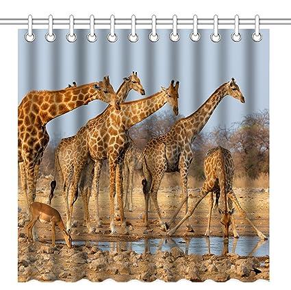 Amazon Wknoon 72 X Inch Shower CurtainNature Wildlife