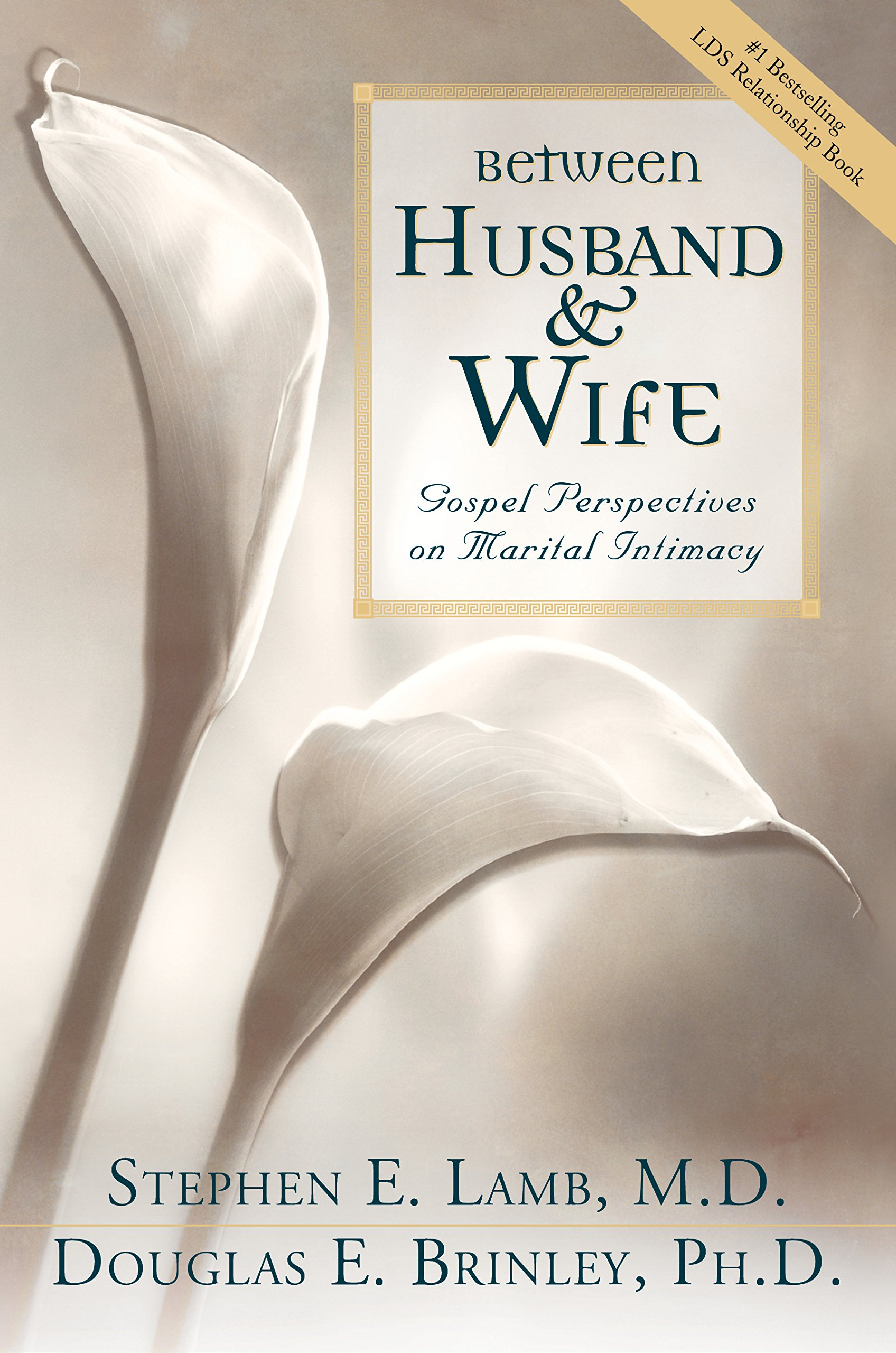 between husband and wife gospel perspectives on marital intimacy