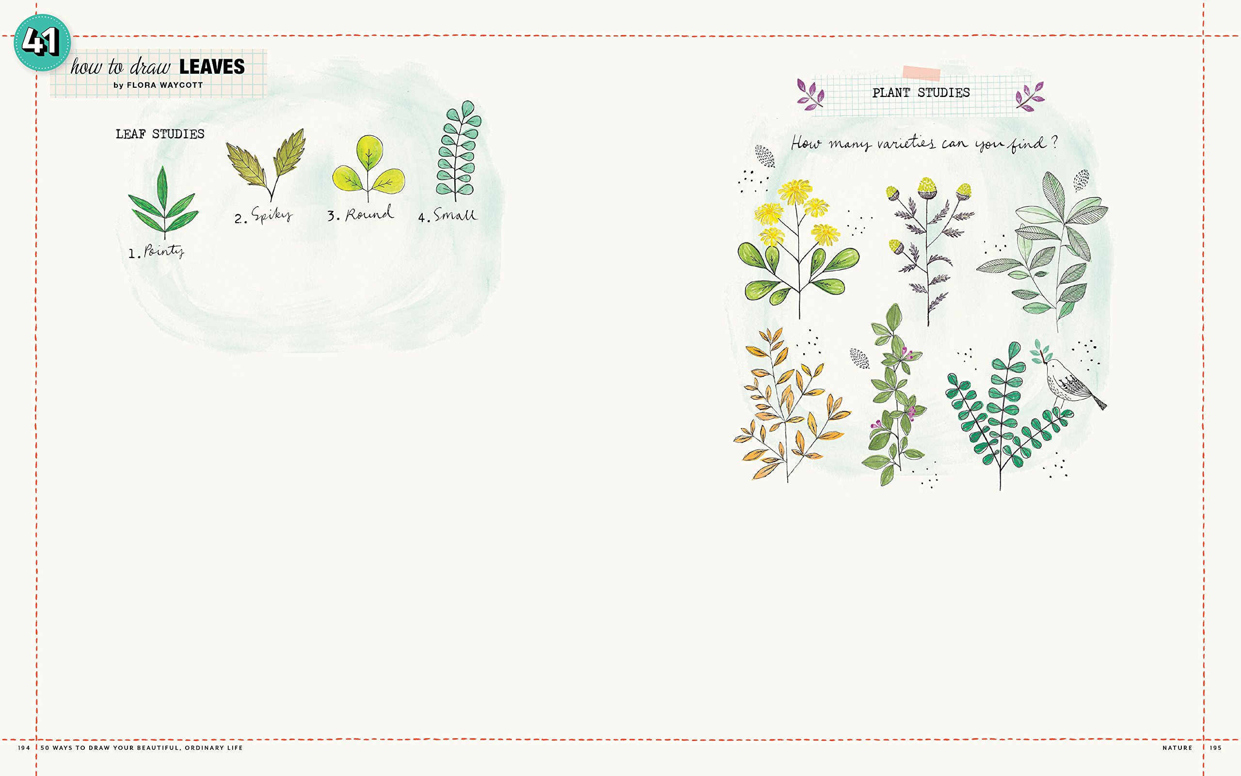 Amazon Com 50 Ways To Draw Your Beautiful Ordinary Life Practical
