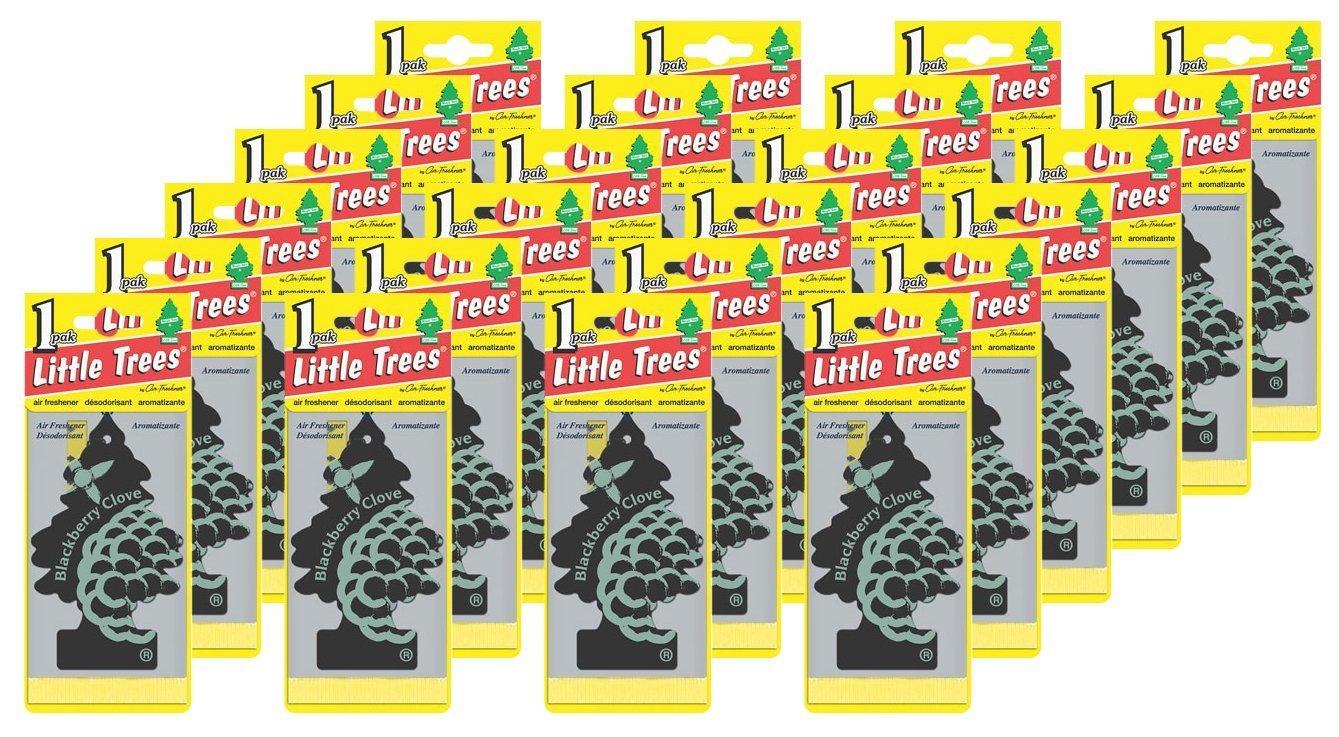 Car-Freshner Little Trees, Blackberry Clove, Pack of 24 Car Freshner Corp U1P-17343-24PK