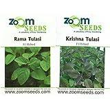 Easy Gardening Rama & Krishna (Black) Tulsi /Tulasi Seeds Holy basil Seeds