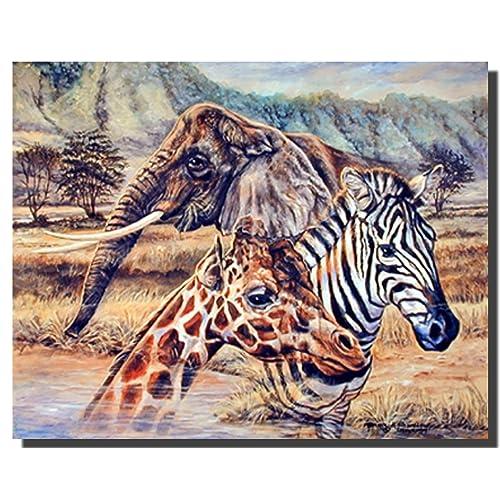Incroyable African Zebra, Giraffe U0026 Elephant Wildlife Animal Decor Art Print Poster  (16x20)