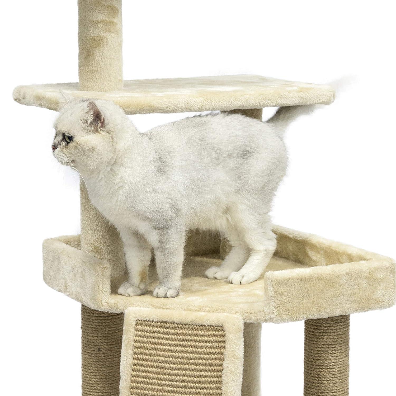 Amazon.com: AmazonBasics Árbol para gato con plataforma ...