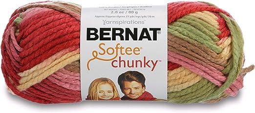Bernat Softee Chunky Ombre Yarn-Summerset
