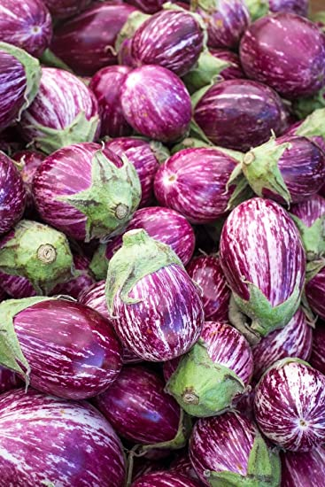 melanzana Tsakoniki Melanzana varieta bianco-viola semi