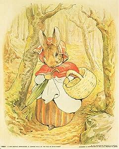 Beatrix Potter - The Tale of Peter Rabbit Kids Room Wall Decor Art Print Poster (16x20)