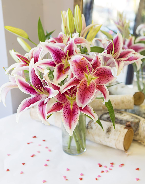 Amazon bouquet of 8 fresh cut stargazer lilies with vase by amazon bouquet of 8 fresh cut stargazer lilies with vase by kabloom grocery gourmet food izmirmasajfo Images