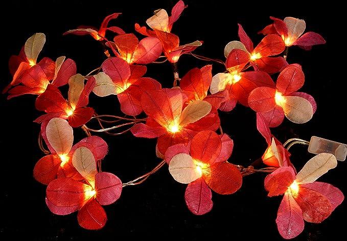 Guru shop catena luminosa orchidea led orchidea 20 pz. rosa
