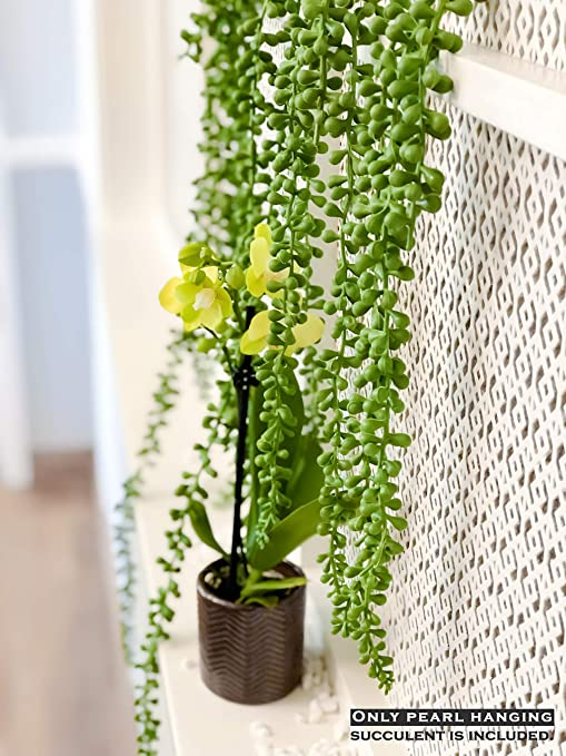 ARTIFICIAL//FAKE GREENERY 1 x SUCCULENT DECORATIVE MOSS BALL WITH HANGING ROPE