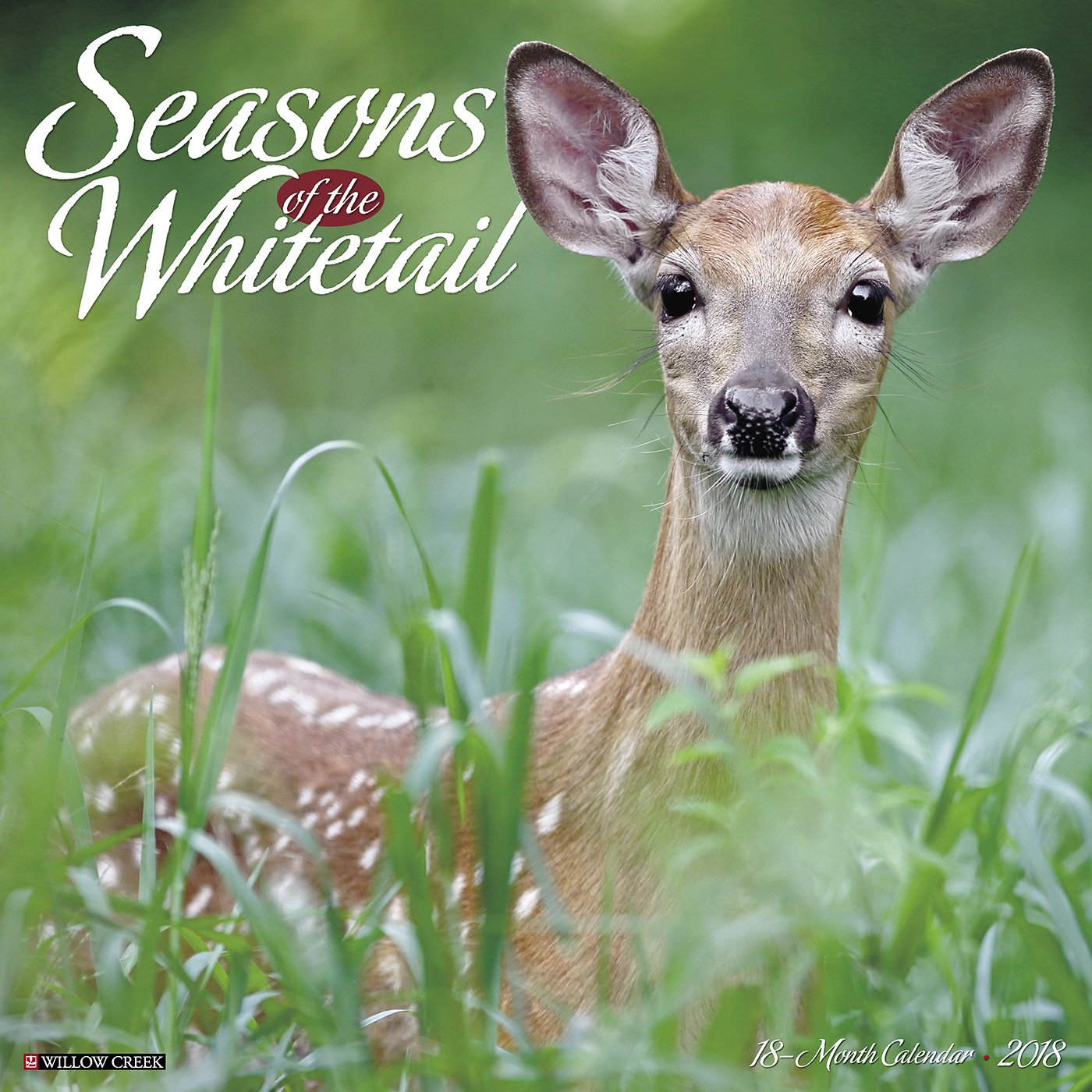 Read Online Seasons of the Whitetail 2018 Calendar ebook