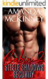 Cabin 2 (Steele Shadows Security)