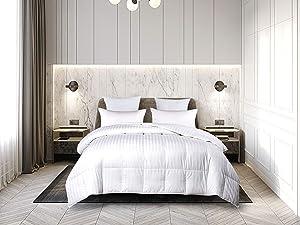 Blue Ridge Home Fashions 500 Thread Count Damask Stripe Comforter, Full/Queen, White