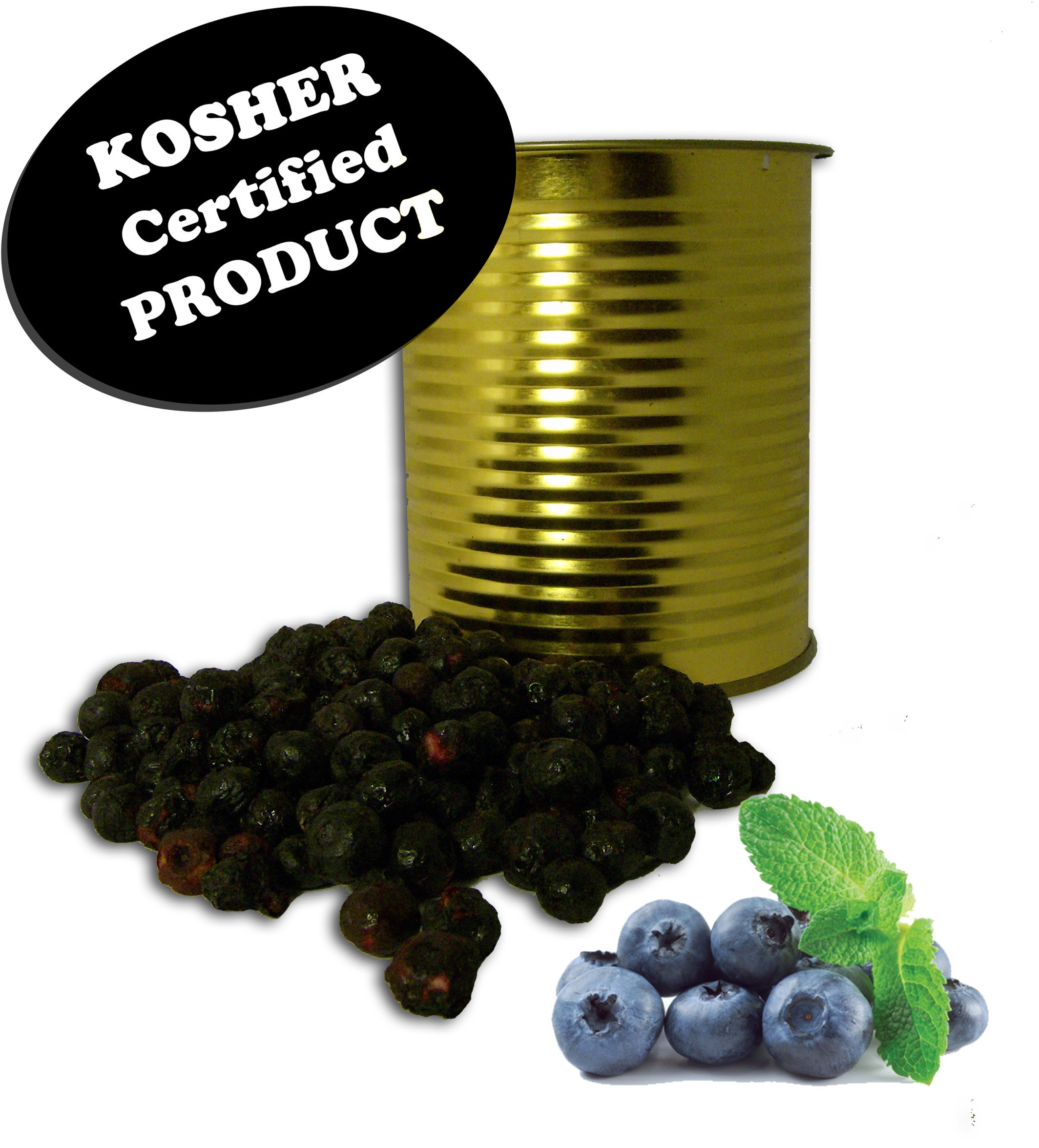 1 Case/12 Cans of Future Essentials Canned KOSHER Freeze Dried Wild Blueberries by Future Essentials (Image #1)