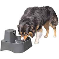 PetSafe Drinkwell 7.5 Litre Dog and Cat Water Fountain, Best for Large Dog Breeds and Multiple Pet Households, Easy-to…