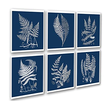 Amazon.com: Navy Blue Fern Wall Art Print set of 6 unframed Wall Art ...