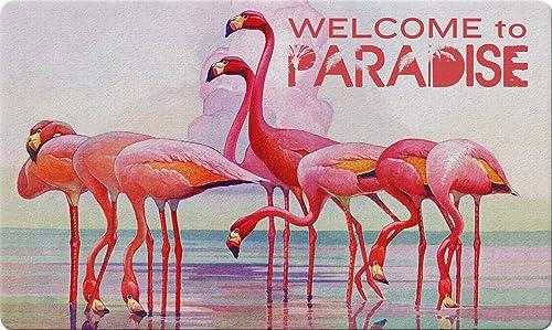 Toland Home Garden 800411 Flamingo Paradise Doormat, 18 x 30 , Multicolor