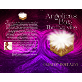 Angelica's Box The Evolving (The Angelica's Box Series Book 2)