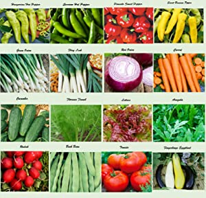 Set of 16 Assorted Organic Vegetable Seeds & Herb Seeds 16 Varieties Create a Deluxe Garden All Seeds are Heirloom, 100% Non-GMO Sweet Pepper Seeds, Hot Pepper Seeds-Red Onion Seeds- Green Onion Seeds