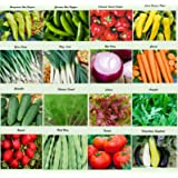Set of 16 Assorted Organic Vegetable Seeds & Herb Seeds 16 Varieties Create a Deluxe Garden All Seeds are Heirloom, 100% Non-