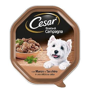 Cesar Recetas de Campo con Ternera y Pavo en una Hermosa Salsa - Paquete de 14 Unidades: Amazon.es: Productos para mascotas