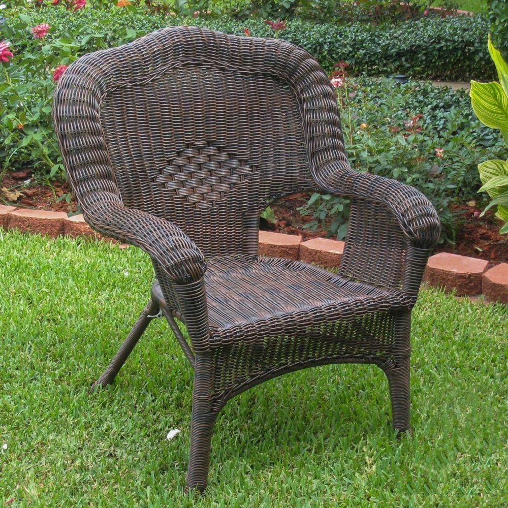 International Caravan Furniture Piece Camelback Resin Wicker Patio Chairs Set of 2