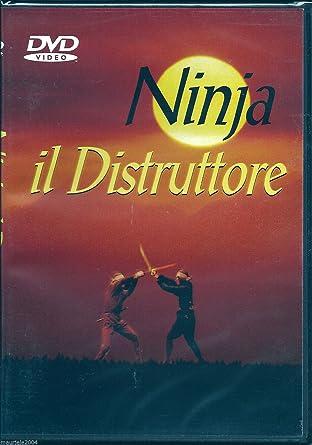 Ninja Il Distruttore [Italia] [DVD]: Amazon.es: Stuart Smith ...
