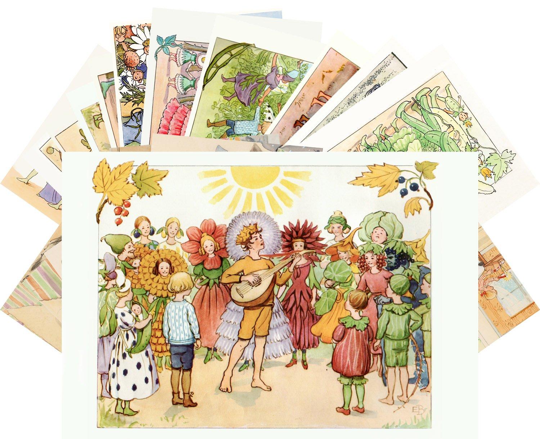 Amazon com : Postcard Set 24pcs Family Life and Garden