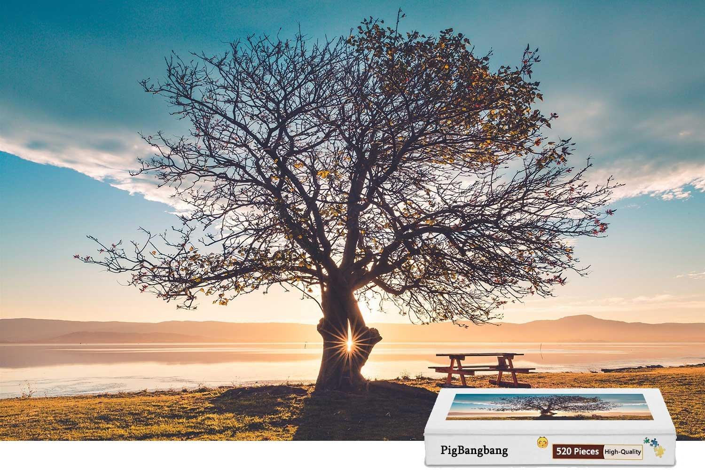 『3年保証』 pigbangbang B07DXKK2W8、ハンドメイドintellectiv Games Photomosaic Jigsawパズルボックス木製colorful- LonelyツリーベンチGrass River – Sunsetグレア – X 500ピースジグソーパズル(20.6 X 15.1