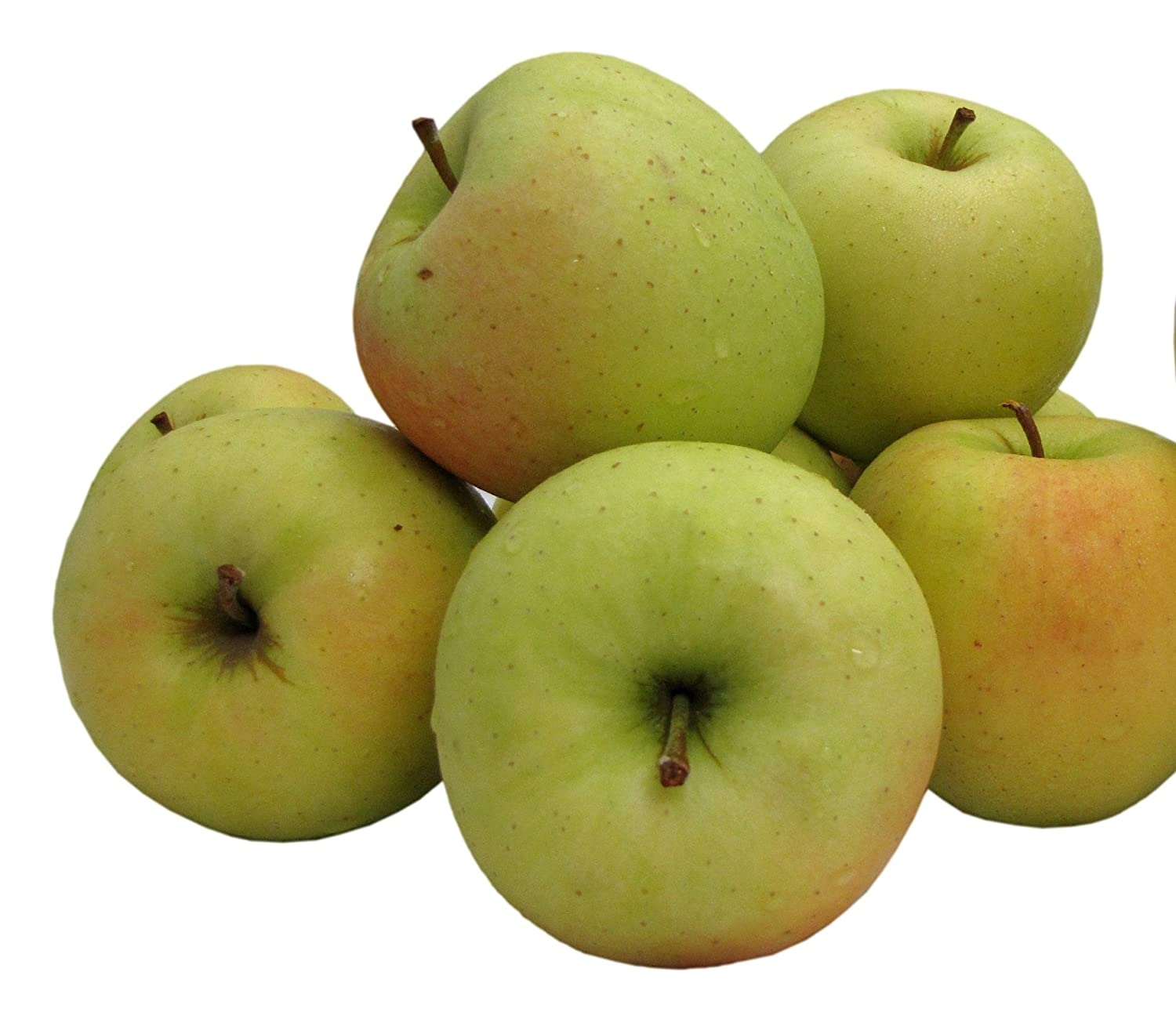 Kauffman Orchards Homegrown Golden Delicious Apples, Fresh-Picked in Lancaster County, Pennsylvania (Box of 8)