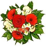 """Blumenstrauß Blumenversand """"Kleiner Schatz"""" +Gratis Grußkarte+Wunschtermin+Frischhaltemittel+Geschenkverpackung"""