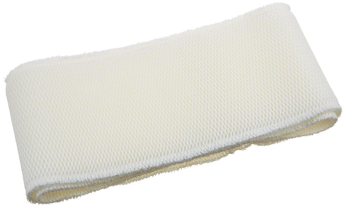 LSE Lighting compatible UV Bulb for BioZone 10-36000 10-H36000