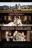 Eisenstein in Guanajuato [Import]