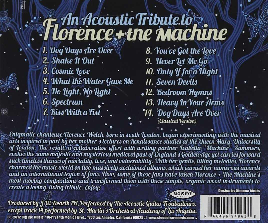 An Acoustic Tribute to Florence & the Machine by Big Eye Music