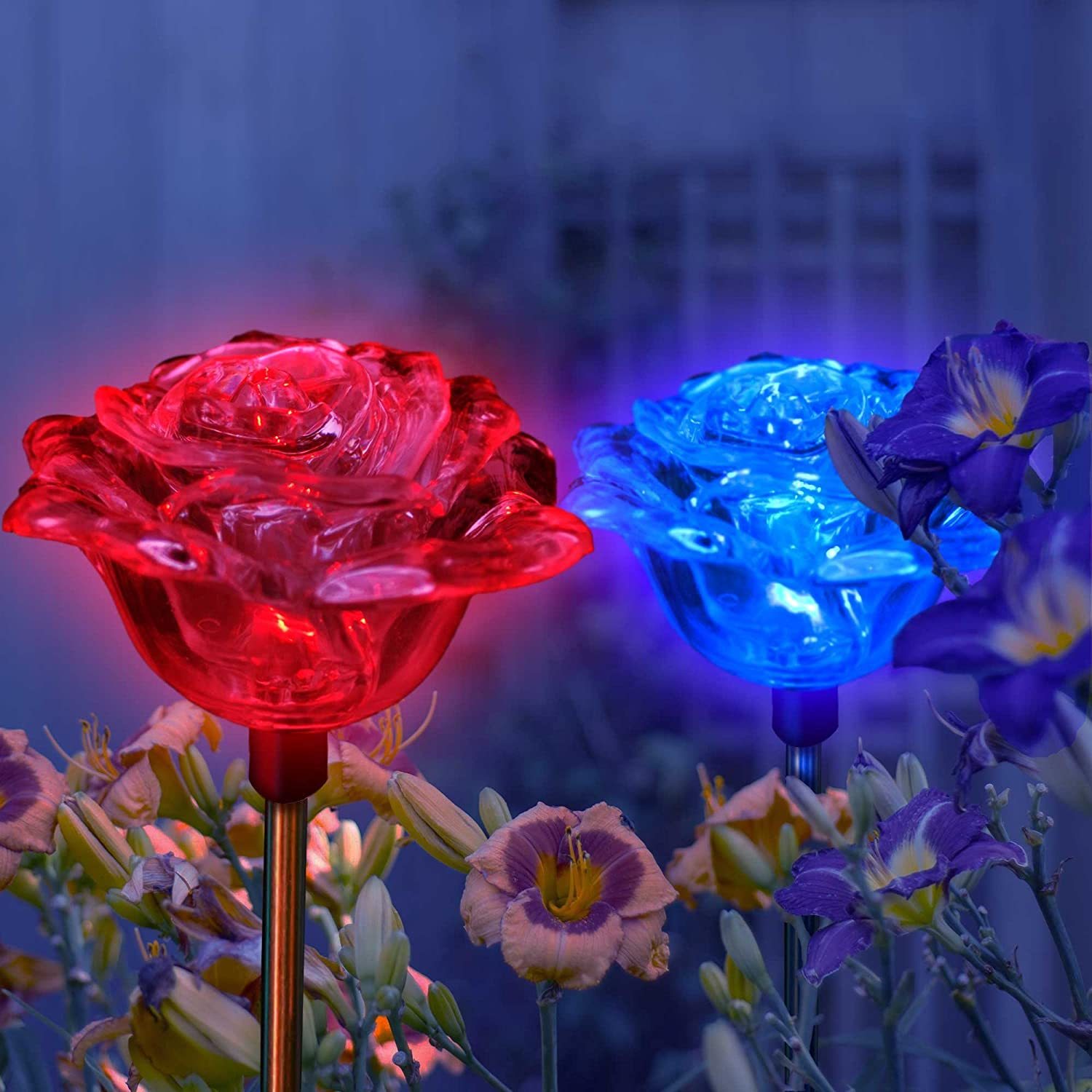 Amazon.com : Solar Rose Lights Holiday Outdoor Decoration Color ...