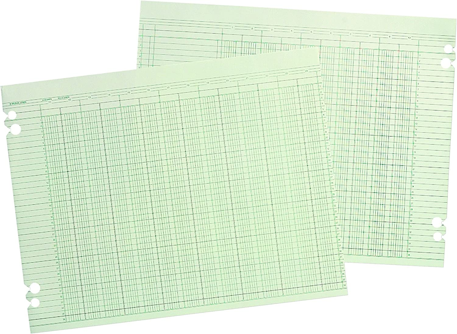 Wilson Jones G1010 Accounting Sheets, 10 Column, 9-1/4 x 11-7/8, Green (Pack of 100 Loose Sheets)