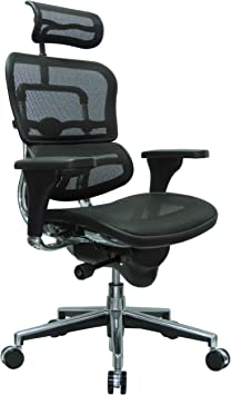 Ergohuman High Back Swivel Chair - Extraordinary Quality