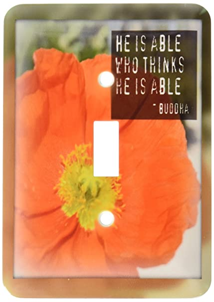 3drose lsp326701 framed buddha he is able poppy flower 3drose lsp326701 framed buddha he is able poppy flower inspirational quotes single toggle switch mightylinksfo