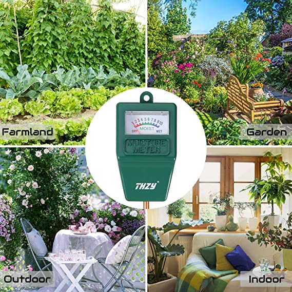 Garten Pflanzen Trockenen Regionen Tipps Sparen , Feuchtigkeit Meter Feuchtigkeit Thzy Innen Außen Feuchtigkeit