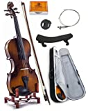 SKY 4/4 Full Size SKYVN201 Solid Maple Wood Violin with Lightweight Case, Brazilwood Bow, Shoulder Rest, String, Rosin and Mute