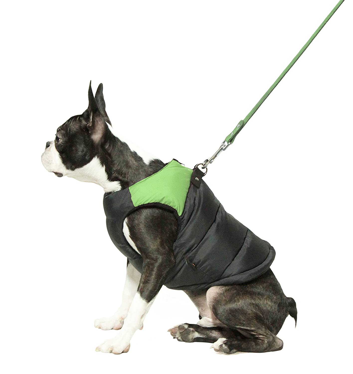 Padded Cold Winter Vest for Small Dogs with Safe Fur Guard Zipper Closure
