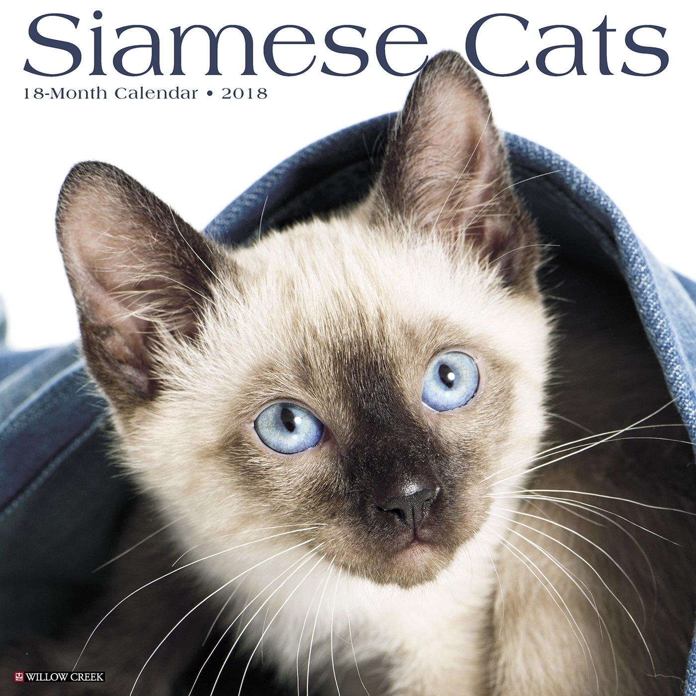 Siamese Cats 2018 Calendar Willow Creek Press